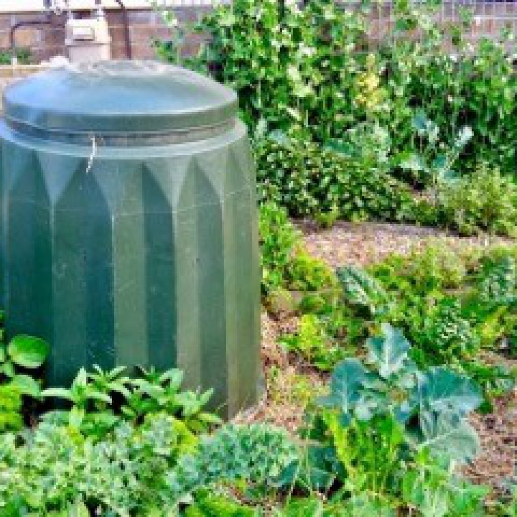 compost-bin-1